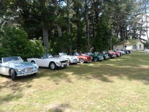 panoramica delle macchine con in prima fila l'Austin Healey di Giovanni